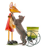 CAT 03 JE0188 01
