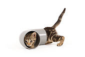 CAT 03 JE0201 01
