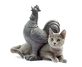 CAT 03 JE0226 01