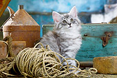 CAT 03 JE0296 01