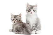 CAT 03 JE0382 01