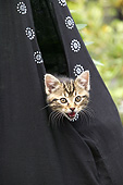 CAT 03 JE0383 01
