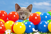 CAT 03 JE0399 01