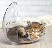 CAT 03 JE0418 01
