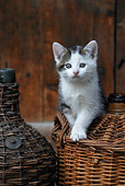 CAT 03 KH0046 01