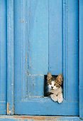 CAT 03 KH0251 01