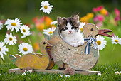 CAT 03 KH0301 01