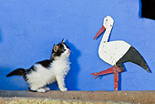 CAT 03 KH0305 01