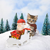 CAT 03 KH0364 01