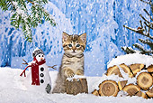 CAT 03 KH0367 01