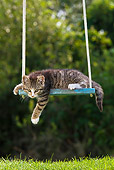 CAT 03 KH0392 01