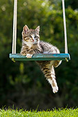 CAT 03 KH0393 01
