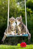 CAT 03 KH0395 01