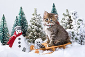 CAT 03 KH0410 01