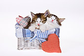 CAT 03 KH0450 01