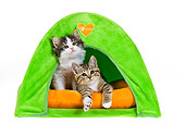 CAT 03 KH0466 01