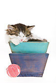 CAT 03 KH0469 01
