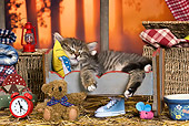 CAT 03 KH0518 01