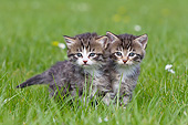 CAT 03 KH0574 01