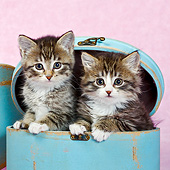 CAT 03 KH0647 01