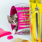 CAT 03 KH0760 01
