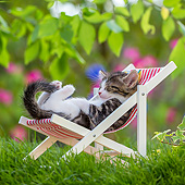 CAT 03 KH0837 01