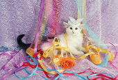 CAT 03 RC0132 01