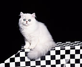 CAT 03 RK0048 02
