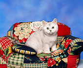 CAT 03 RK0060 07