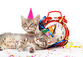 CAT 03 RK0187 01