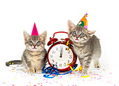 CAT 03 RK0188 06