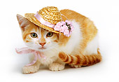 CAT 03 RK0214 10