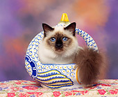 CAT 03 RK0222 03