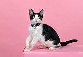 CAT 03 RK0360 09