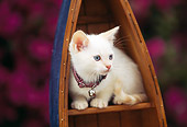 CAT 03 RK0384 01