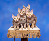 CAT 03 RK0676 05