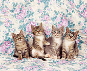 CAT 03 RK0819 03
