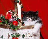 CAT 03 RK0853 11