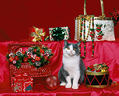 CAT 03 RK0896 15