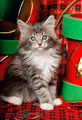 CAT 03 RK0917 01