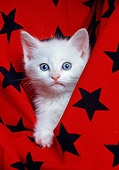 CAT 03 RK1597 05