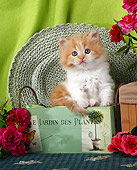 CAT 03 SJ0012 01
