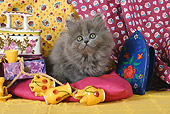 CAT 03 SJ0020 01