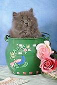 CAT 03 SJ0021 01