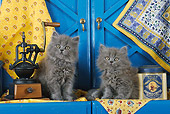 CAT 03 SJ0027 01