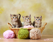 CAT 03 XA0015 01