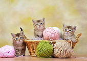 CAT 03 XA0016 01