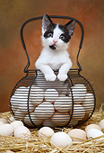 CAT 03 XA0023 01