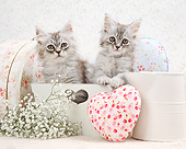 CAT 03 XA0046 01