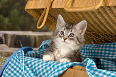 CAT 03 AL0016 01
